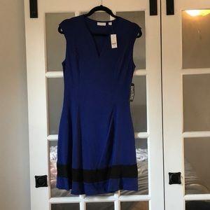 NWT NEW YORK & CO Royal Blue and Black Dress